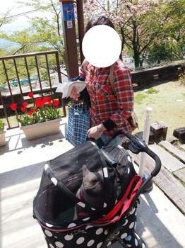 琵琶湖バレイ1.jpg